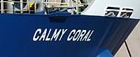 Calmy_coral1
