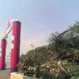 バラ祭り in 福山
