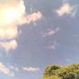 夏の(ような)空模様